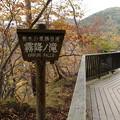 霧降の滝へ_日光 D4062
