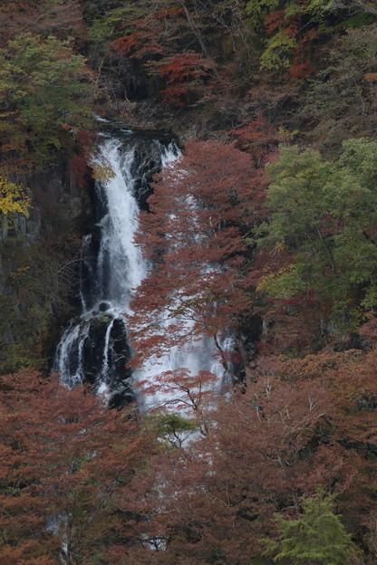 霧降の滝_日光 D4066