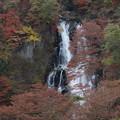 霧降の滝_日光 D4071
