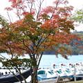 Photos: 紅葉_十和田湖 D3839