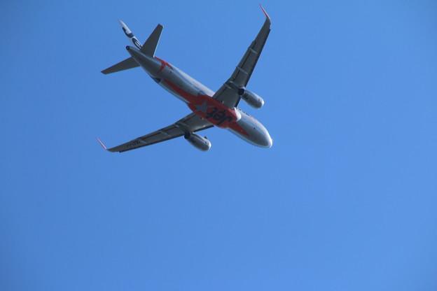 飛行機_成田 D4131