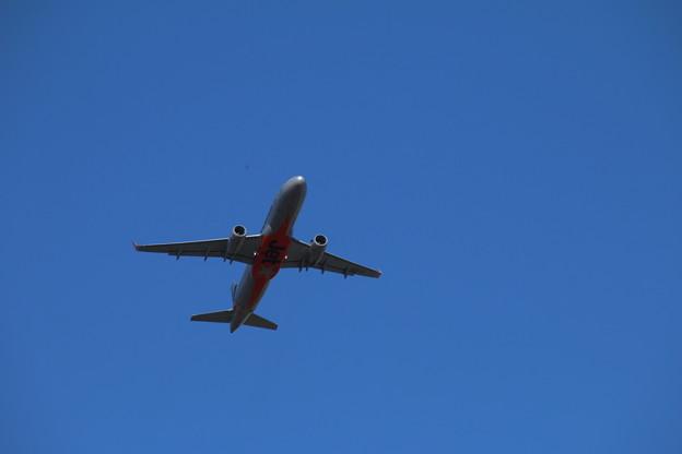 飛行機_成田 D4129