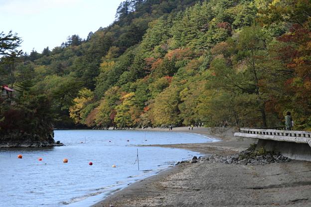 Photos: 十和田湖 D3811