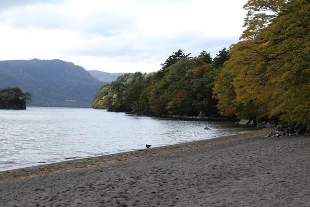 十和田湖 D3821