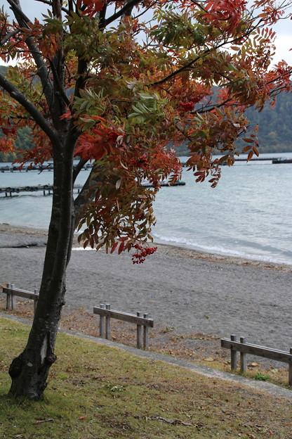 紅葉_十和田湖 D3795