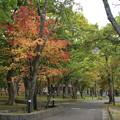 Photos: 紅葉_青森 D3837
