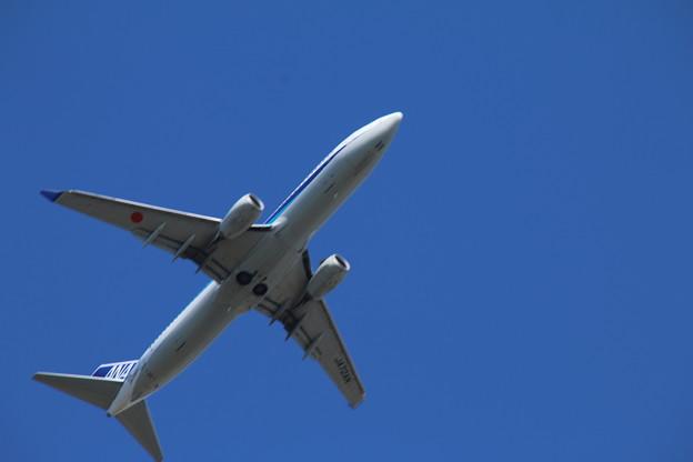 飛行機_成田 D4144