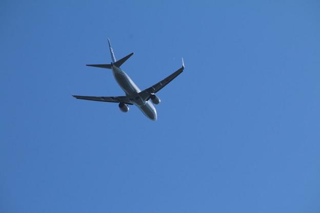 飛行機_成田 D4146