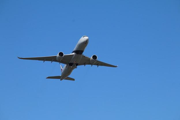 飛行機_成田 D4155