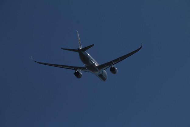 飛行機_成田 D4158