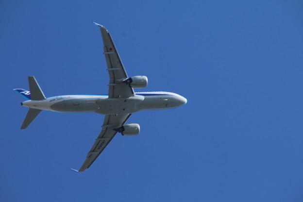 飛行機_成田 D4161