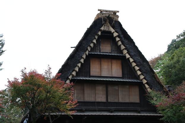 日本民家_川崎 D4261
