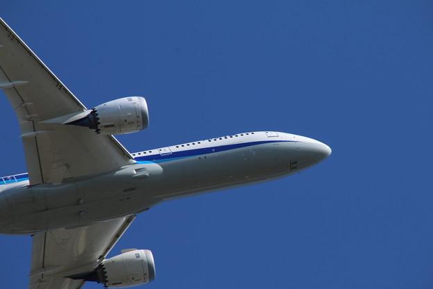 飛行機_成田 D4165