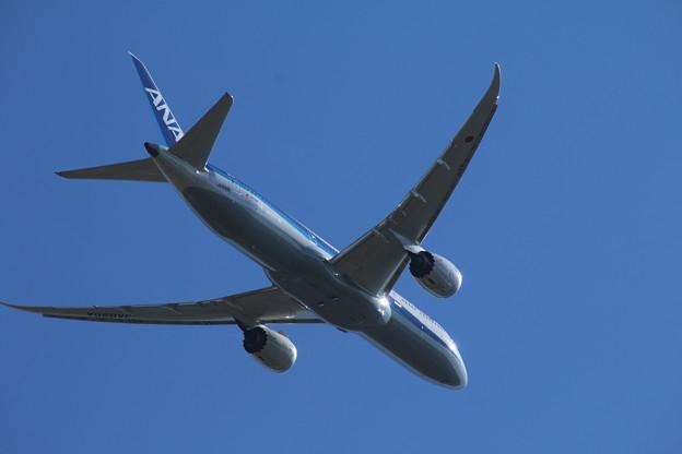飛行機_成田 D4166