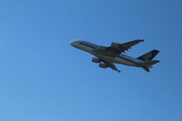 飛行機_成田 D4171
