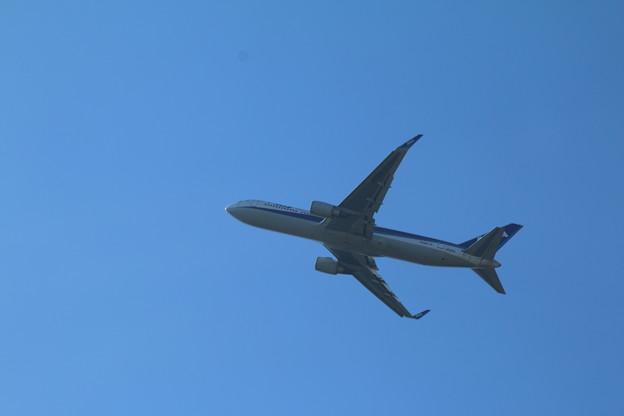 飛行機_成田 D4170