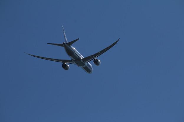 飛行機_成田 D4167