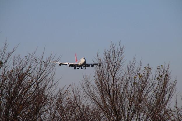 飛行機_成田 D4219