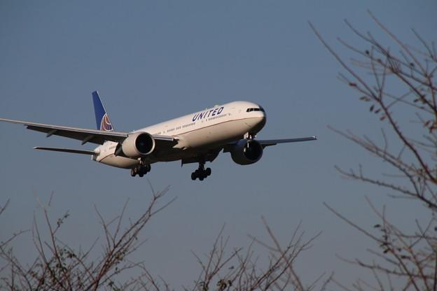 飛行機_成田 D4229