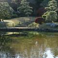 Photos: 日本庭園_公園 D4333