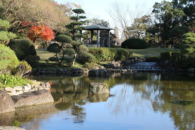 日本庭園_公園 D4339