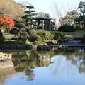 Photos: 日本庭園_公園 D4339