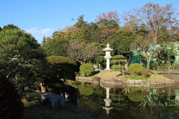 日本庭園_公園 D4341