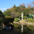 Photos: 日本庭園_公園 D4341