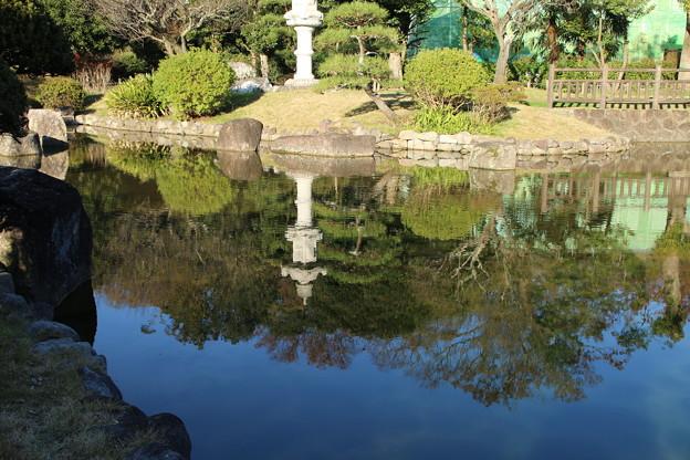 紅葉_公園 D4342