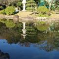 Photos: 紅葉_公園 D4342