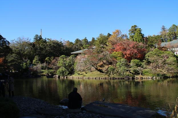 紅葉_公園 D4371