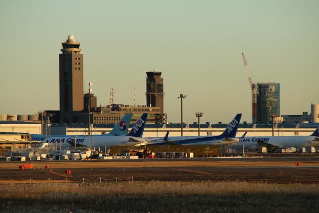 飛行機_成田 D4423