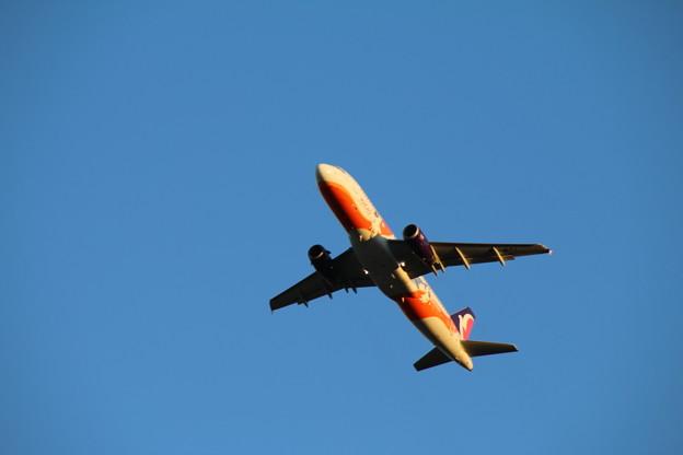 飛行機_成田 D4427