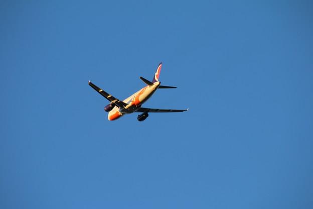 飛行機_成田 D4431