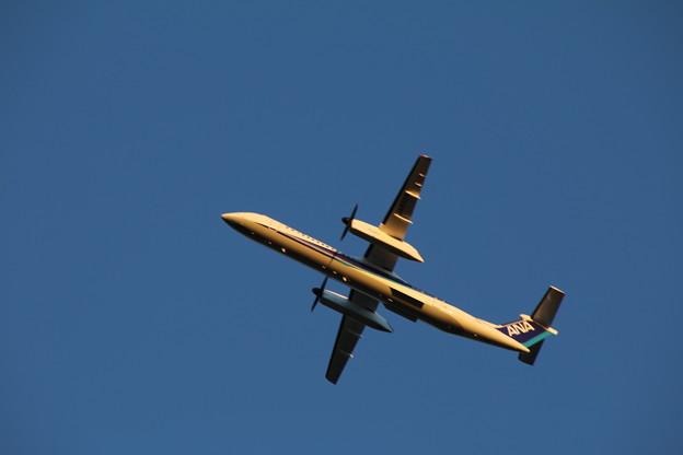 飛行機_成田 D4440