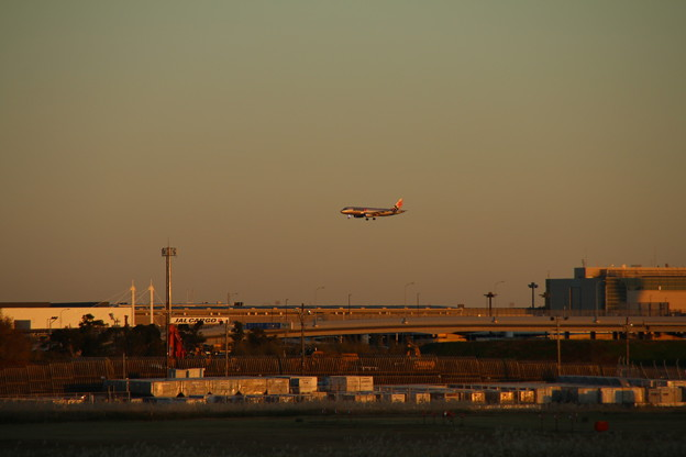 飛行機_成田 D4446