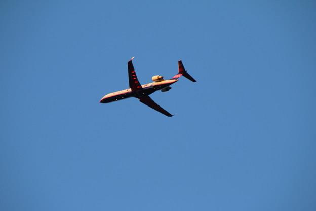 飛行機_成田 D4449