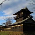 Photos: 逆井城跡_坂東 D4540