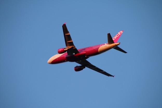 飛行機_成田 D4461