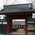 Photos: 逆井城跡_坂東 D4552