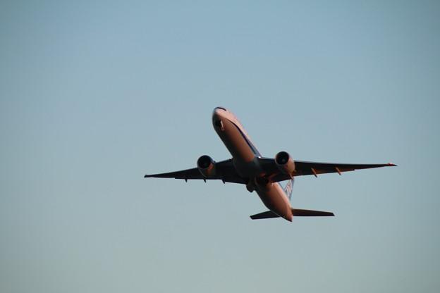飛行機_成田 D4464
