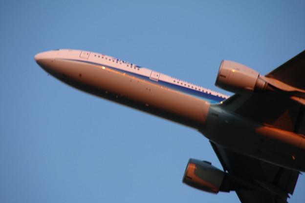 飛行機_成田 D4465