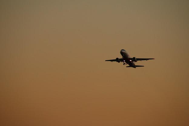 飛行機_成田 D4469
