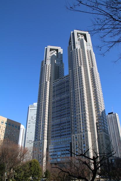 都庁_東京 D4564
