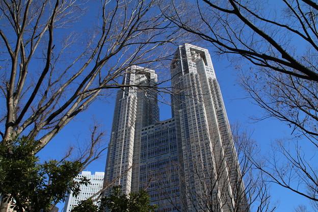 都庁_東京 D4566