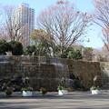 ナイアガラの滝_新宿 D4574