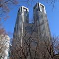 都庁_新宿 D4568