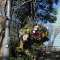 公園_新宿 D4577
