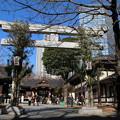 熊野神社_新宿 D4583