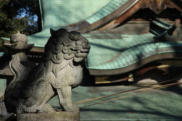狛犬_神社 D4603